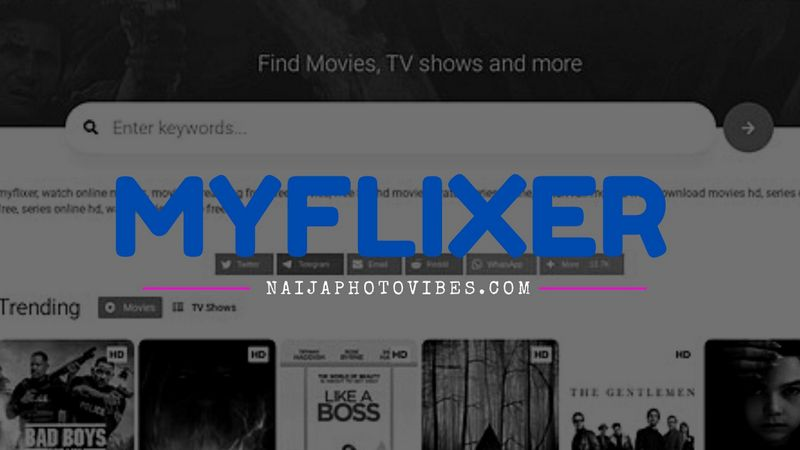 MyFlixer – Watch Movies and TV Shows Online for Free in HD